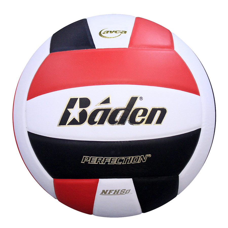 Baden Perfection Elite Leather Volleyball