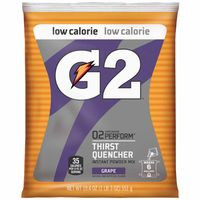 308-13439 | Gatorade G2 Powder