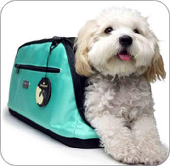 Airline-Approved Pet Carriers