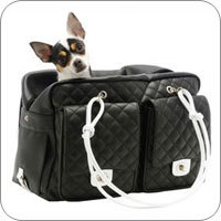 Small Dog Carriers Stylish Designer Dog Carriers Funnyfur Com