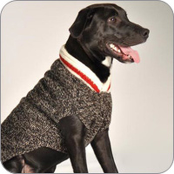 the latest 97539 b950b Dog Clothes | Pet Apparel | Funny Fur | GW Little