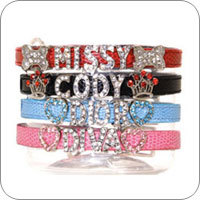 Personalized Collars & Leads