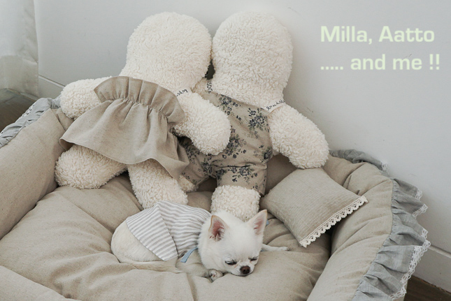 aatto-and-milla-main.jpg