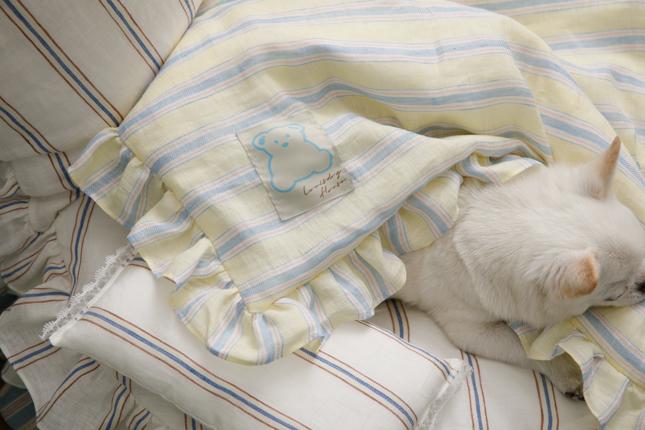 candybar-goose-blanket-main.jpg