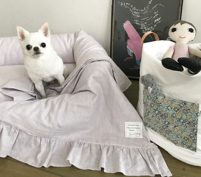 classy-blanket-main.jpg