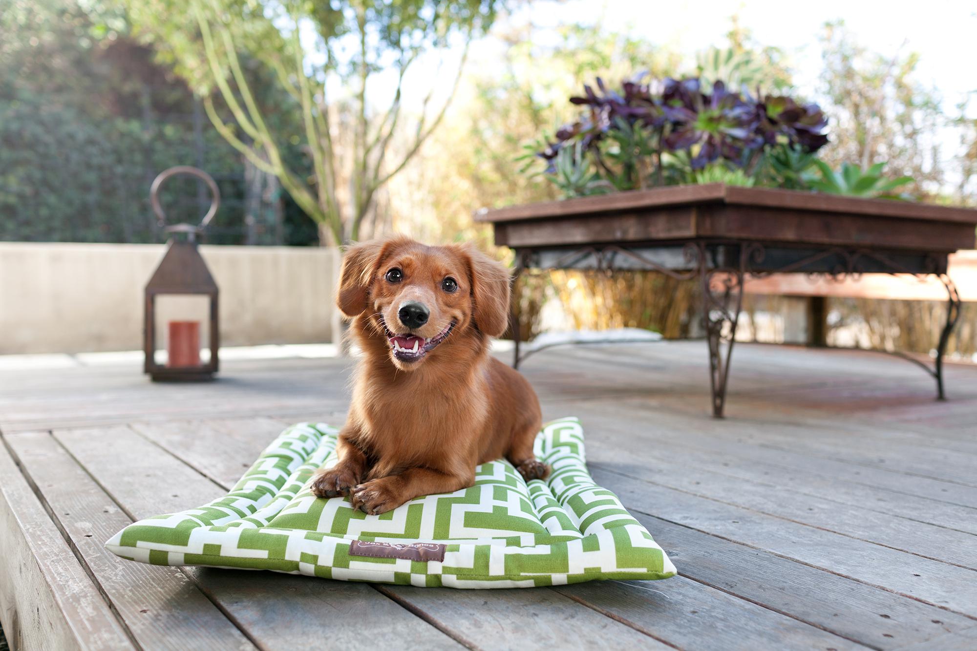 cozy-mat-occasional-outdoor-labryinth-lifestyle-2000x1333-72dpi-rgb.jpg