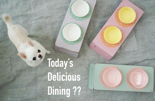 delicious-dining-main.jpg