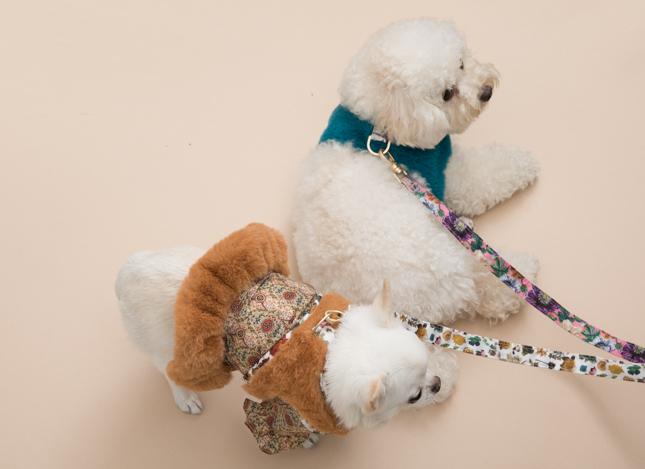 fur-harness-set-main.jpg