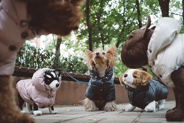 goose-down-hoodie-main.jpg