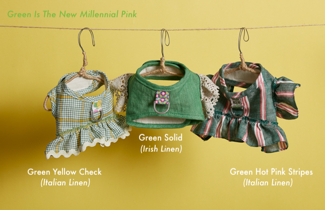 greeny-harness-set-main.jpg