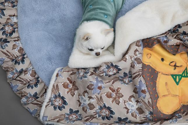 honey-bear-blanket-main.jpg