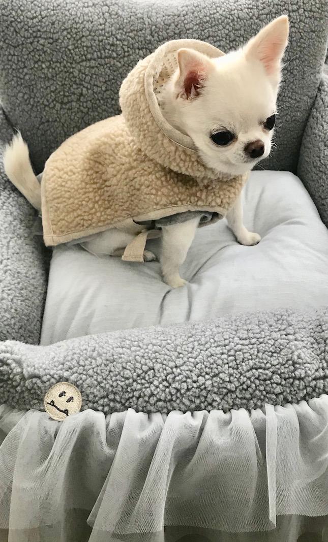hooded-poncho-main.jpg