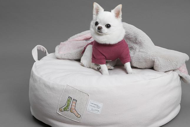 oxford-applique-cushion-main.jpg