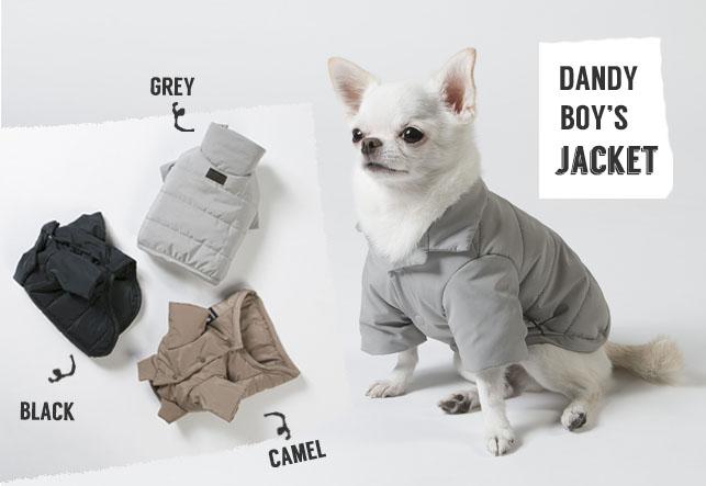 padded-jacket-main.jpg