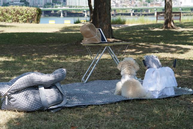 picnic-mat-main.jpg