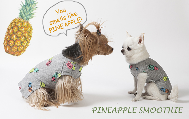 pineapple-smoothie-main.jpg
