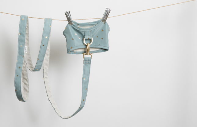 starry-harness-set-main.jpg