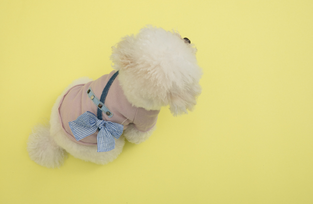 studded-tee-couture-main.jpg