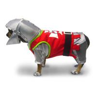 Sir Barks a Lot Dog Costume