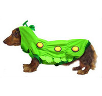 Caterpillar Dog Costume