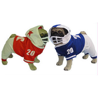 Mardi Paws Dog Costume