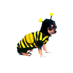 Baby Bee Dog Costume