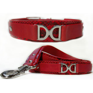 Double D Collar & Leash