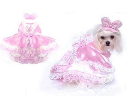 Barktoria's Secret Dog Costume