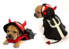 Devil Dog Costume