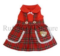 Lil Teddy Dog Dress