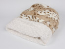 Artic Leopard with Ivory Curls