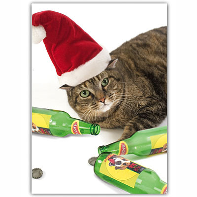 Cat Holiday Card