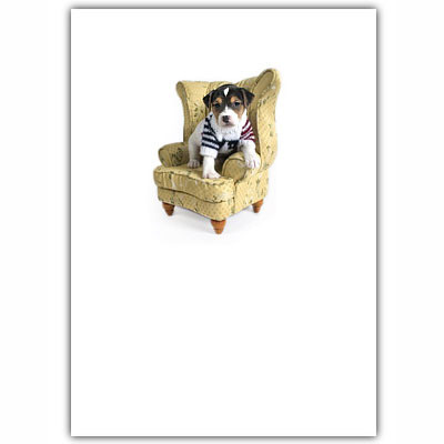 Puppy in Chair Blank Card