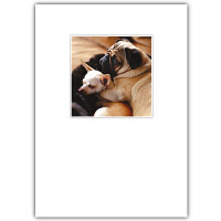 Pug & Chihuahua Love Card