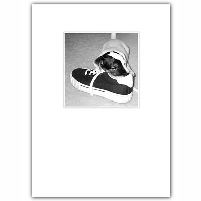 Jack Russell Puppy Friendship Card