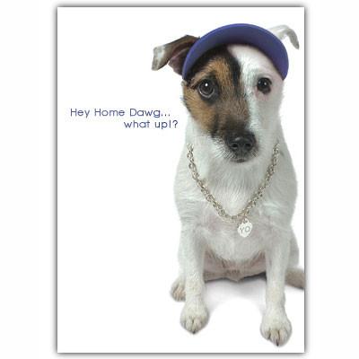 Jack Russell Rap Birthday Card