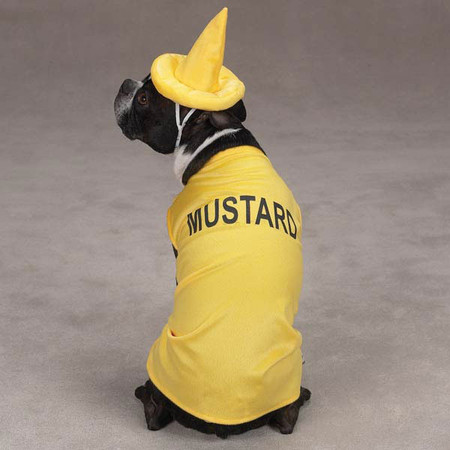 Mustard Dog Costume