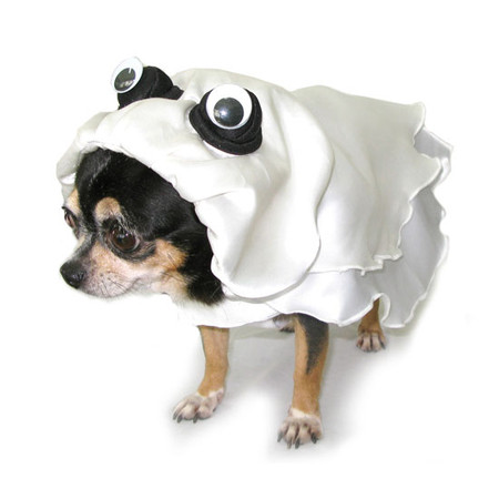 Ghost Dog Costume
