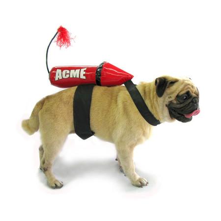 Acme Rocket Dog Costume