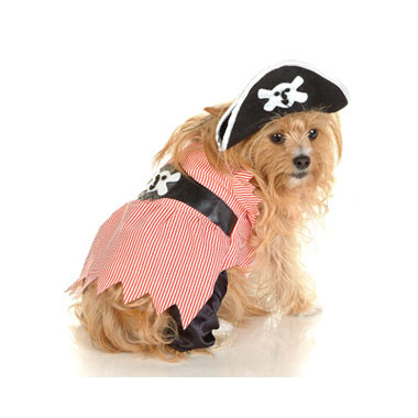 Pirate Puppy Dog Costume
