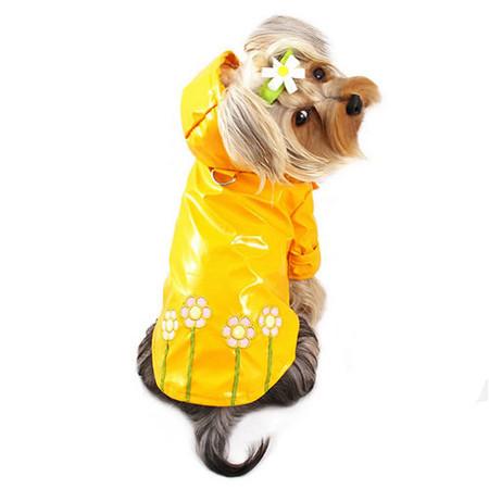 Polka Dots and Daisies Raincoat