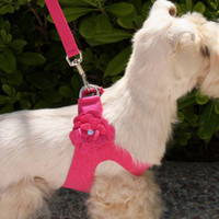 Susan Lanci Tinkie's Garden Step-In Harness