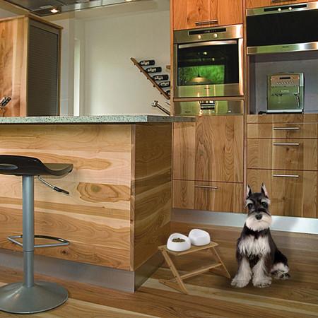 Také Doggy Dining Tray