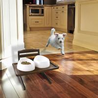 Doggy Dining Tray V1