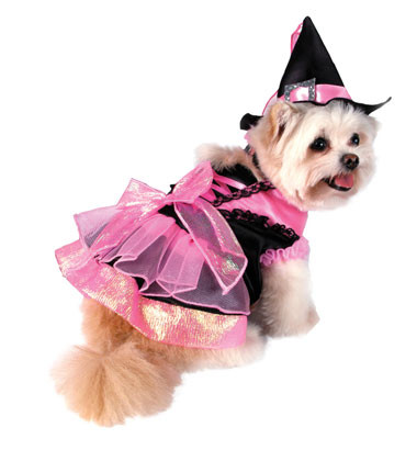 Shiny Pink Witch Dog Costume