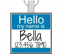 Hello, My Name Is... Silver Pet ID Tags