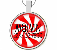 Peppermint Silver Pet ID Tags
