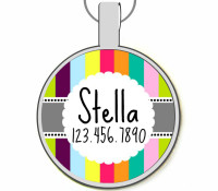 Retro Carnival Stripes Silver Pet ID Tags