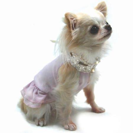 Oscar Newman Sheer Bliss Dress