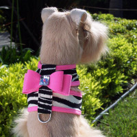 Susan Lanci Contrast Color Big Bow Tinkie Harnesses